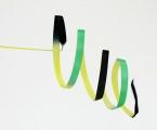 Shaded ribbon PASTORELLI, 5 m. Colour: Black-yellow-green, Art. 03221